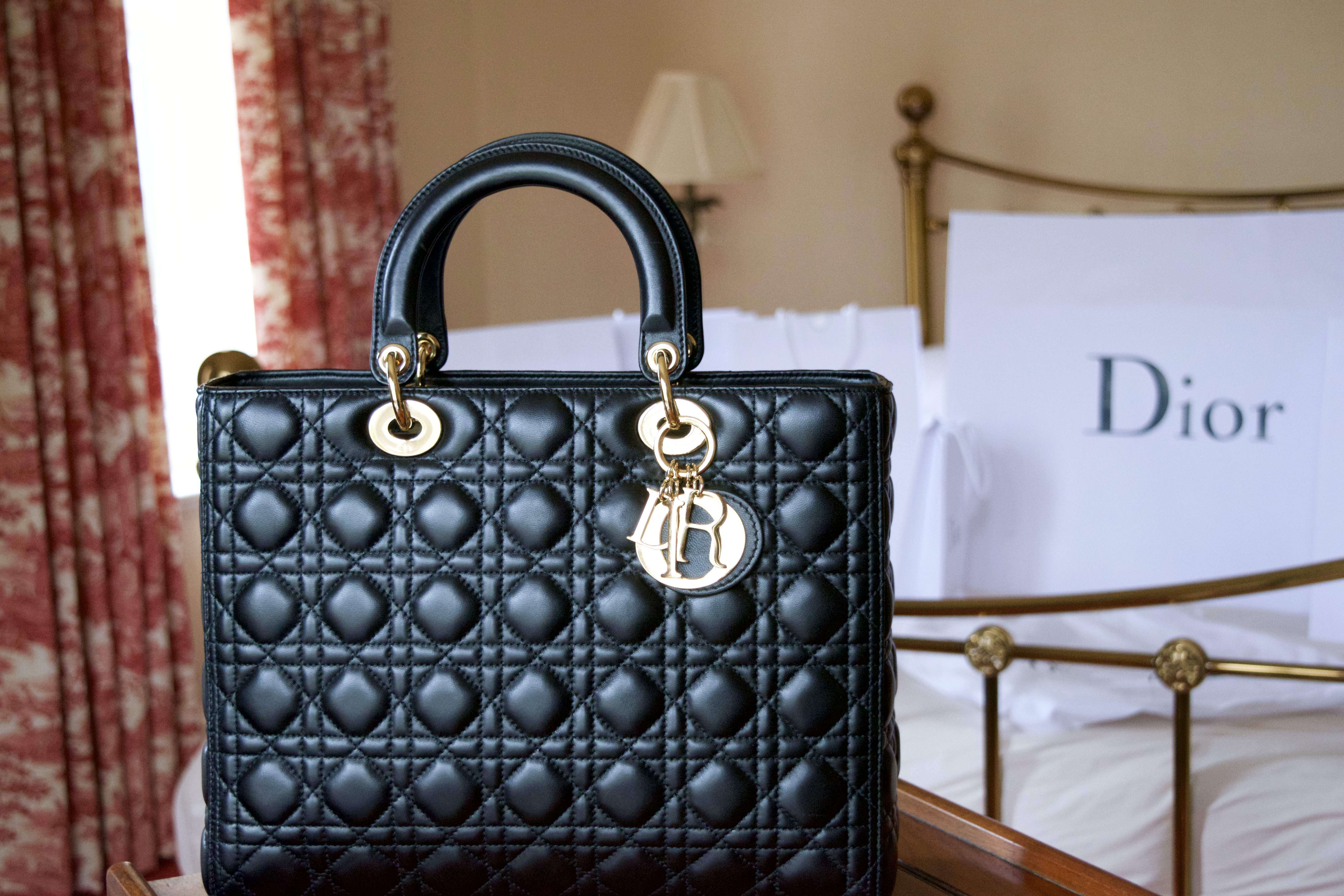7296a205038f3 Thoughts on the Large Lady Dior