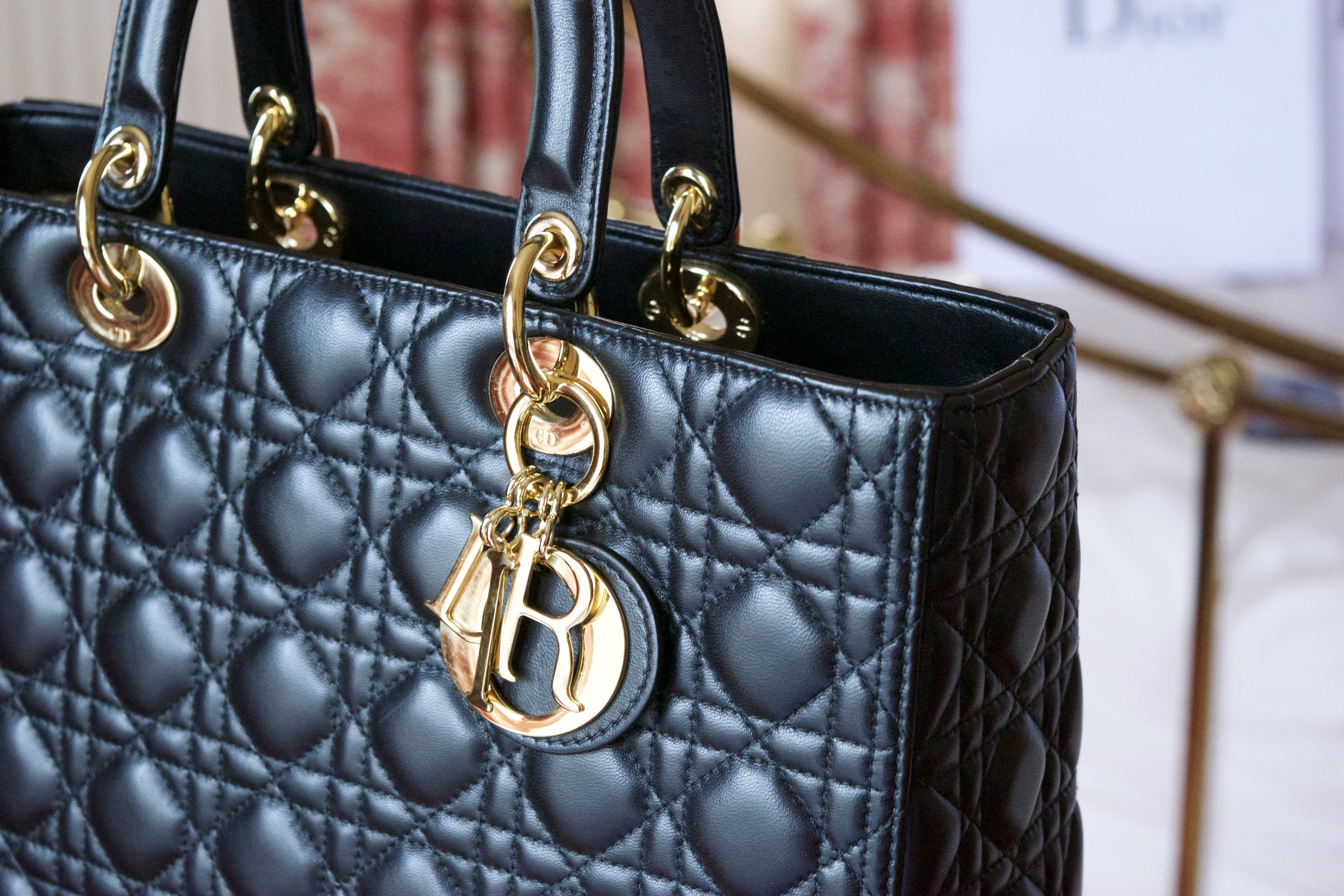 5fcfed5a3 Thoughts on the Large Lady Dior | EKD